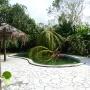 vue de la piscine après le cyclone maria