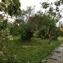 Vue du jardin après le passage du cyclone