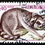 vieux timbre de Guadeloupe racoon